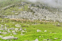 Rifugio Baita Adamè